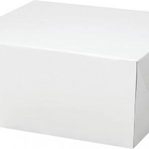 14 X 14 X 6 Cake Box